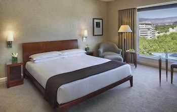Room, 1 King Bed (ANDES)