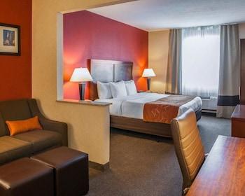 東北印第安納波利斯費希爾斯凱富全套房飯店 Comfort Suites NE Indianapolis Fishers