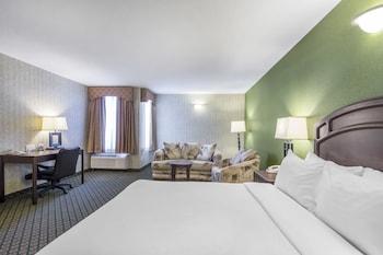Standard Room 1 Queen Bed Non Smoking