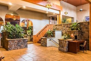 精巧套房飯店 Quaint Inn & Suites