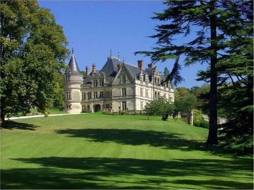 . Château de la Bourdaisière