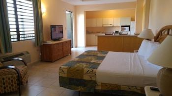Honeymoon Suite with Kitchen