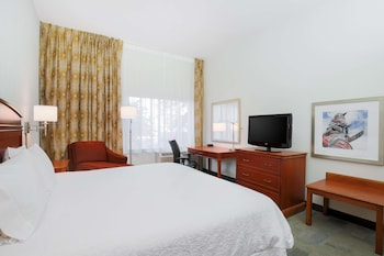 Premium Room, 1 King Bed, Non Smoking, Refrigerator & Microwave