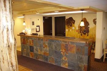 拉皮德城溫德姆速 8 飯店 Super 8 by Wyndham Rapid City