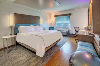 Room, 1 King Bed (Wellness, Enclosed Shower)