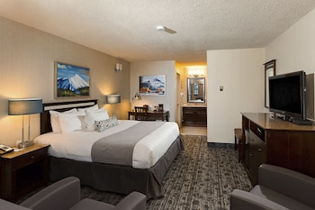 Standard Room, 1 King Bed, Mountain View