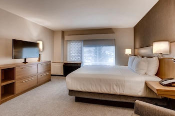 Room, 1 King Bed, Bathtub