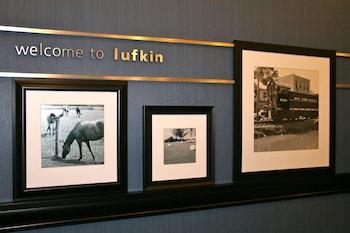 德克薩斯拉夫金歡朋套房飯店 Hampton Inn & Suites Lufkin, TX