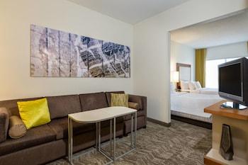 路易斯維爾赫斯特波北萬豪春丘套房飯店 Springhill Suites By Marriott Louisville Hurstbourne North