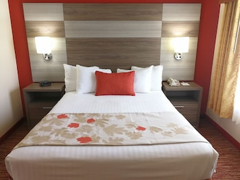 1 Queen 1 Sofa Beds Suite