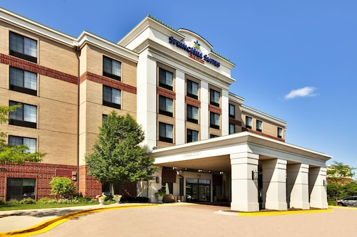 . SpringHill Suites by Marriott Chicago Schaumburg/Woodfield