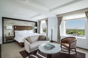 Grand Room, 1 King Bed, Park View (Central Park view)