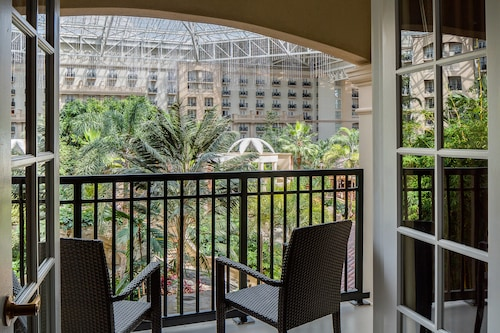 Gaylord Palms Resort & Convention Center image 22