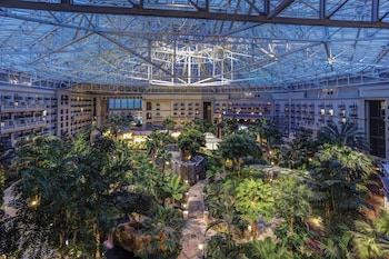 Lobby at Gaylord Palms Resort & Convention Center in Kissimmee