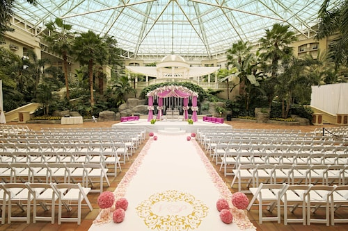 Gaylord Palms Resort & Convention Center image 61