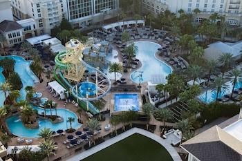 蓋洛德棕櫚溫泉度假飯店 Gaylord Palms Resort & Convention Center