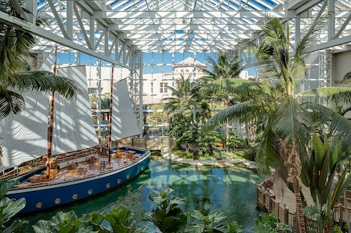 Gaylord Palms Resort & Convention Center image 24