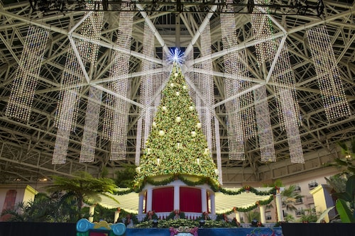 Gaylord Palms Resort & Convention Center image 57