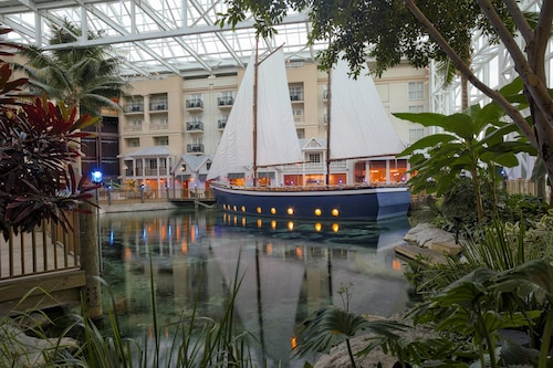 Gaylord Palms Resort & Convention Center image 6