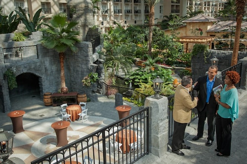 Gaylord Palms Resort & Convention Center image 66