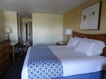 King Room, Premier Ocean View