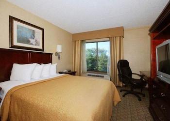 Guestroom at Quality Inn & Suites Bensalem in Bensalem