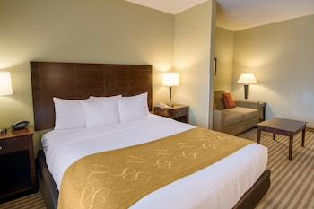Suite, 1 King Bed with Sofa bed, Accessible