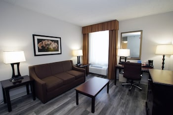Suite, 1 Queen Bed with Sofa bed, Accessible, Refrigerator & Microwave (with Sofabed)
