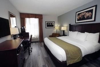 Hotel - Comfort Inn & Suites Paramus