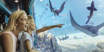Featured Image at Sea World Resort in Main Beach
