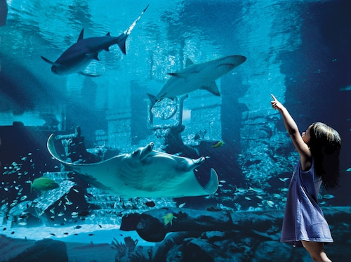 Harborside Resort at Atlantis,