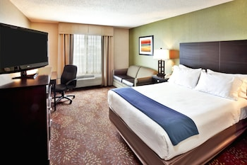 Deluxe Suite, 1 King Bed with Sofa bed, Accessible, Non Smoking (Roll-In Shower)