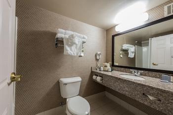 Wingate by Wyndham Schaumburg / Convention Center - Bathroom  - #0