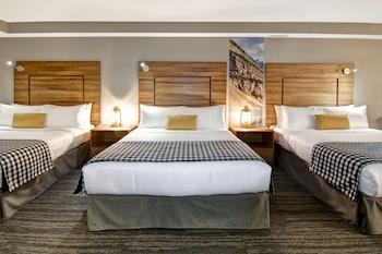 Room, Multiple Beds, Kitchen