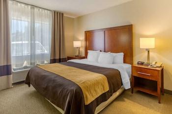 Hotel - Comfort Inn Red Horse