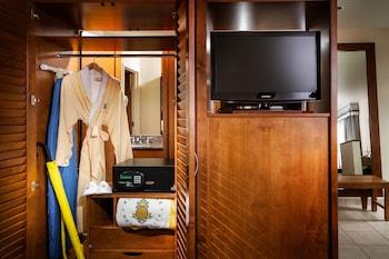 Studio Suite, Accessible, Bathtub