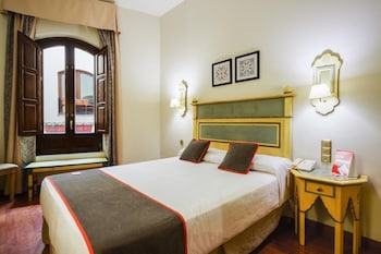Standard Double or Twin Room (Interior)