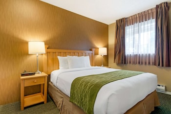 Room, 1 Queen Bed, Non Smoking (Small)