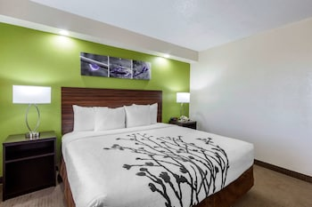 Hotel - Sleep Inn near Busch Gardens/USF