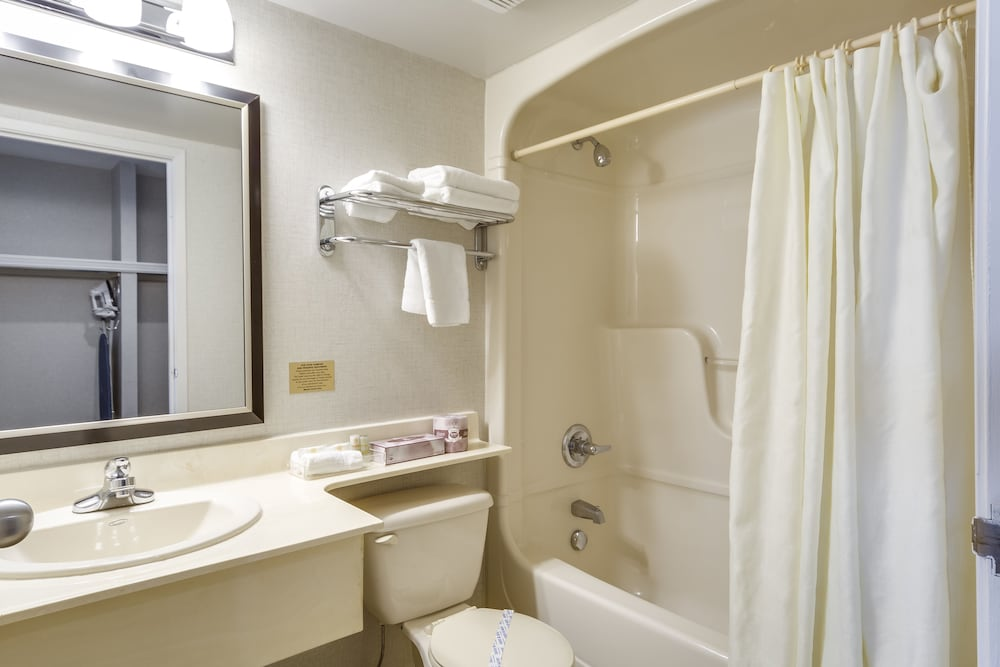Room : Deluxe Room, 1 Queen Bed, Jetted Tub 15 of 69
