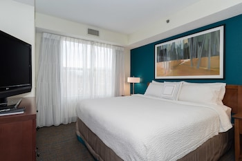Suite, 1 Bedroom (1 King Bed with Sofabed)