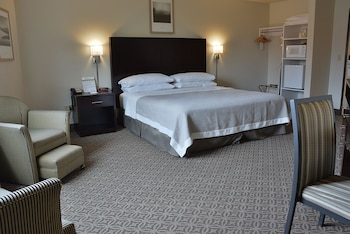 Executive Room, 1 King Bed, Refrigerator & Microwave