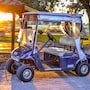 The thumbnail of Golf Cart large image