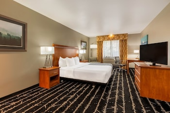 Room, 1 Queen Bed, Accessible (Mobility/Hearing Impaired Accessible)