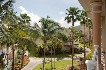 Suite, 1 Bedroom, Balcony, Resort View