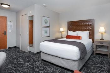 Room, Run of House
