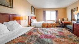 Standard Tek Büyük Yataklı Oda, 2 Çift Kişilik Yatak, Sigara İçilebilir