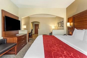 南海文 I-55 凱富全套房飯店 Comfort Suites Southaven I-55