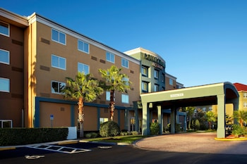 Hotel - Courtyard by Marriott Tampa Oldsmar