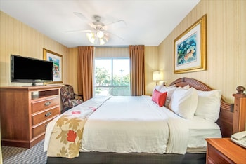 Room, 1 Queen Bed with Sofa bed, Accessible (Mobility Roll in Shower One Bedroom)